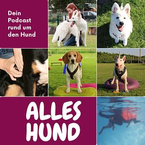 Alles Hund - Dein Podcast rund um den Hund