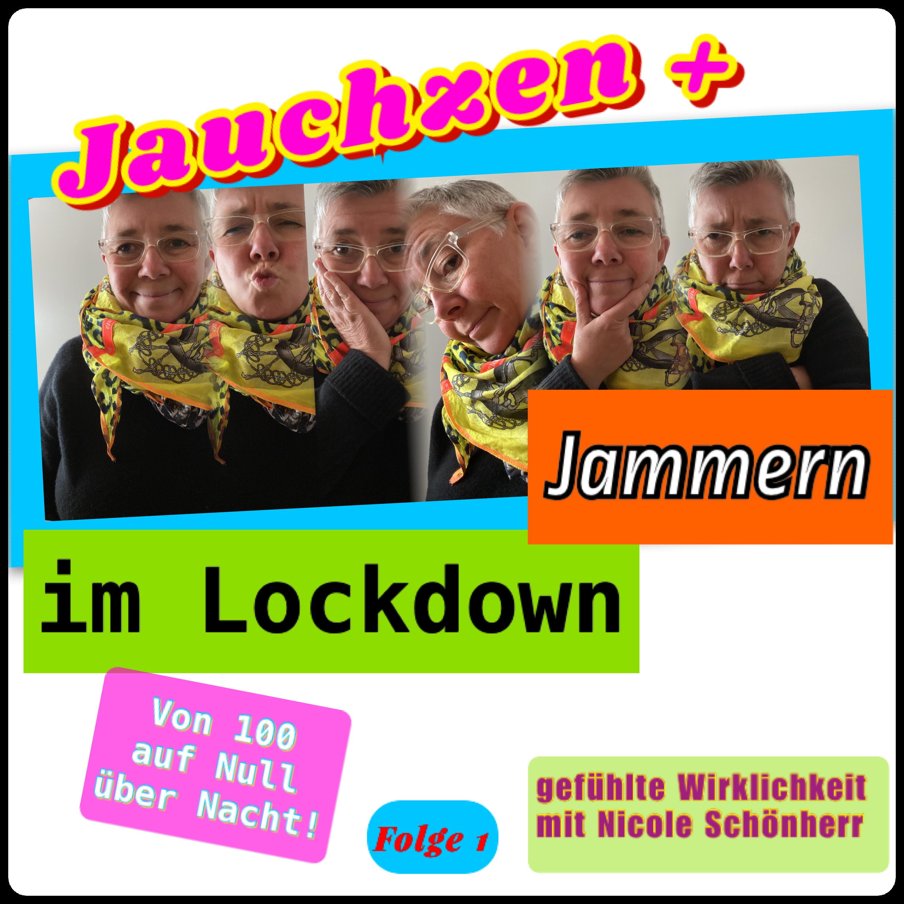 Jauchzen & Jammern im Lockdown Cover